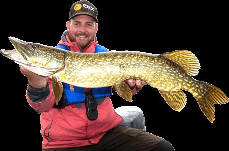 AnglerPro-Pike